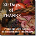 20 Days of Thanks Button
