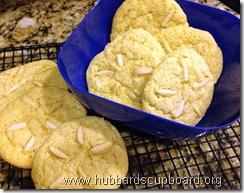 sand dollar cookies 2